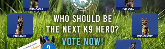Who should be the next K9 Hero?